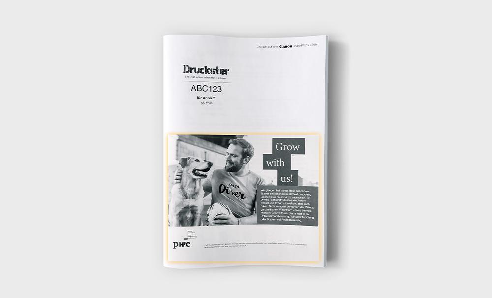 Druckster Skript Titelseite Inserat